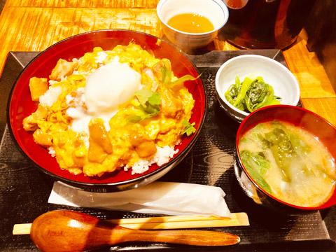 鳥料理森川さんの「究極の親子丼」の写真
