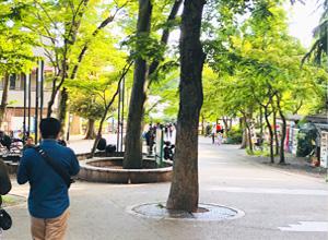 井の頭公園の写真その2