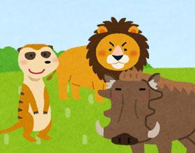 ライオンとイノシシとミーアキャットのイラスト