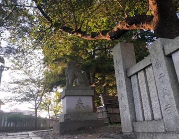 神社の狛犬の写真