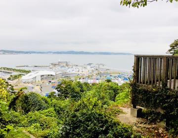 挿入写真「湘南の海と東京オリンピックヨット競技場」