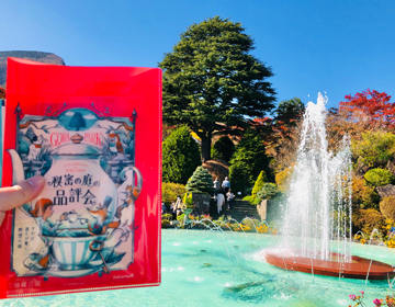 秘密の庭の品評会「謎解きキットと噴水」写真