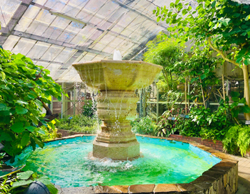 秘密の庭の品評会「温室内の噴水」写真