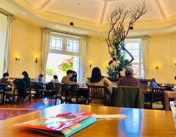秘密の庭の品評会「一色堂茶廊」写真