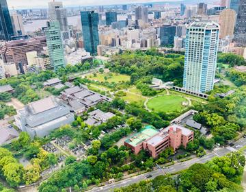 芝公園恋物語「芝公園を見下ろす景観」の写真